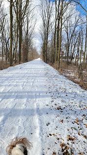 trail.8.jpg