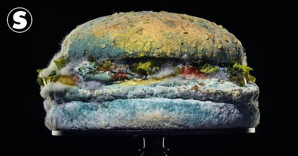 Campanha Verdade e21 - Anúncio Burger Ki