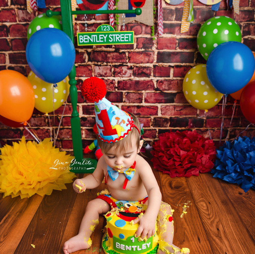 Long Island Cake Smash Photography