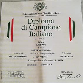 diploma Gin.jpg