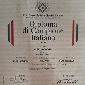Diploma Kimi.jpg