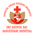 Sanjeevani Logo.png