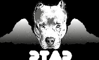 Logo-auf-schwarz.png