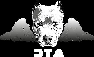 DTA 2021 Logo-auf-schwarz.png