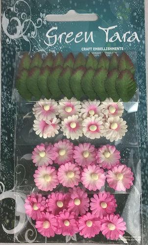 Pink Mimosas & Leaves