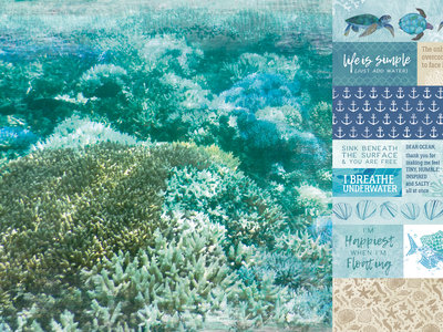 Sand Bar - Deep Sea
