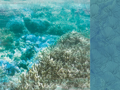 Barrier Reef - Deep Sea