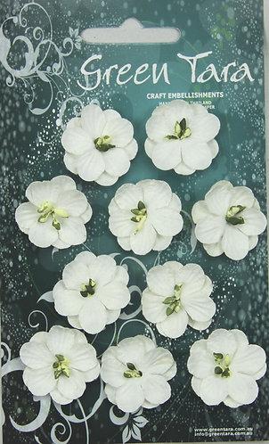 GREEN TARA CHERRY BLOSSOMS WHITE
