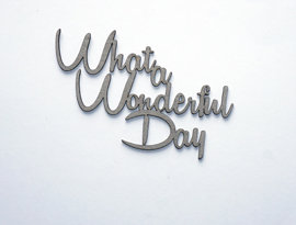 What A Wonderful Day