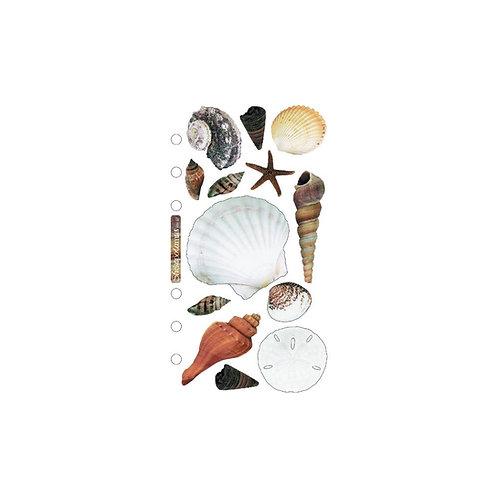 Shells Stickers