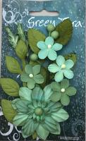 Botanical Garden Mint
