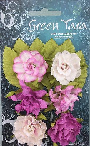 Rose Tea Roses
