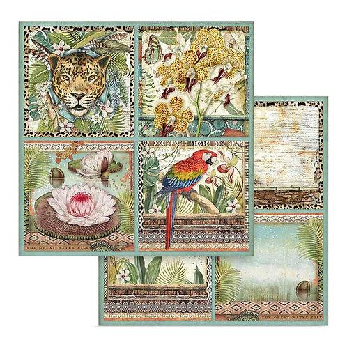 AMAZONIA 12 X 12 CARDS