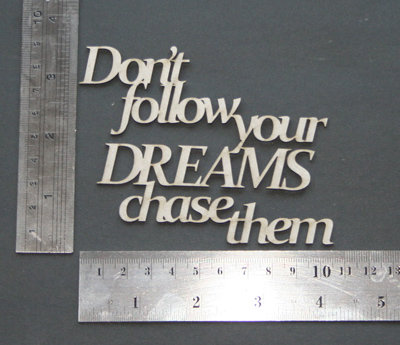 Don't Follow Your Dreams Chase Them