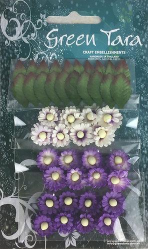 Lavender Mimosas & Leaves