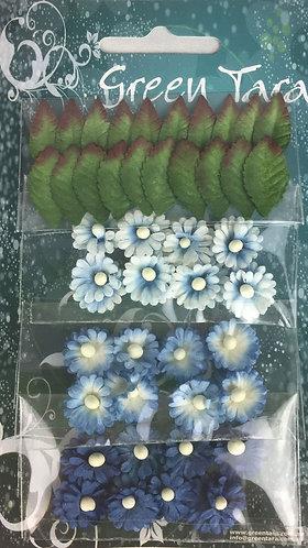 Bright Blue Mimosas & Leaves