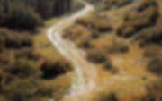 road-to-emmaus (1).jpg