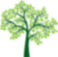 Family Tree Clipart 24741.jpg