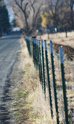 Country road - Fence Big Pine, CA