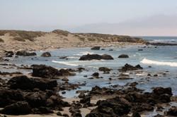 Elephant Seal Reserve near San Simeon 2