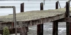 Bodega Bay - Low Tide Bridge to Nowhere