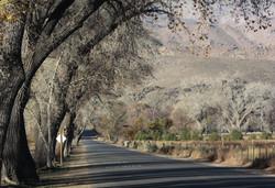 Country road - Big Pine, CA