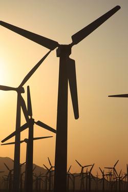 Windmills Sunset 1 - Palm Springs