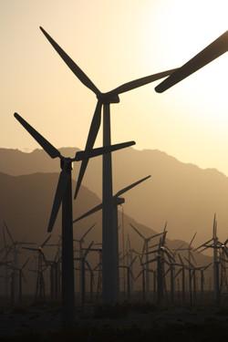 Windmills Sunset 3 - Palm Springs