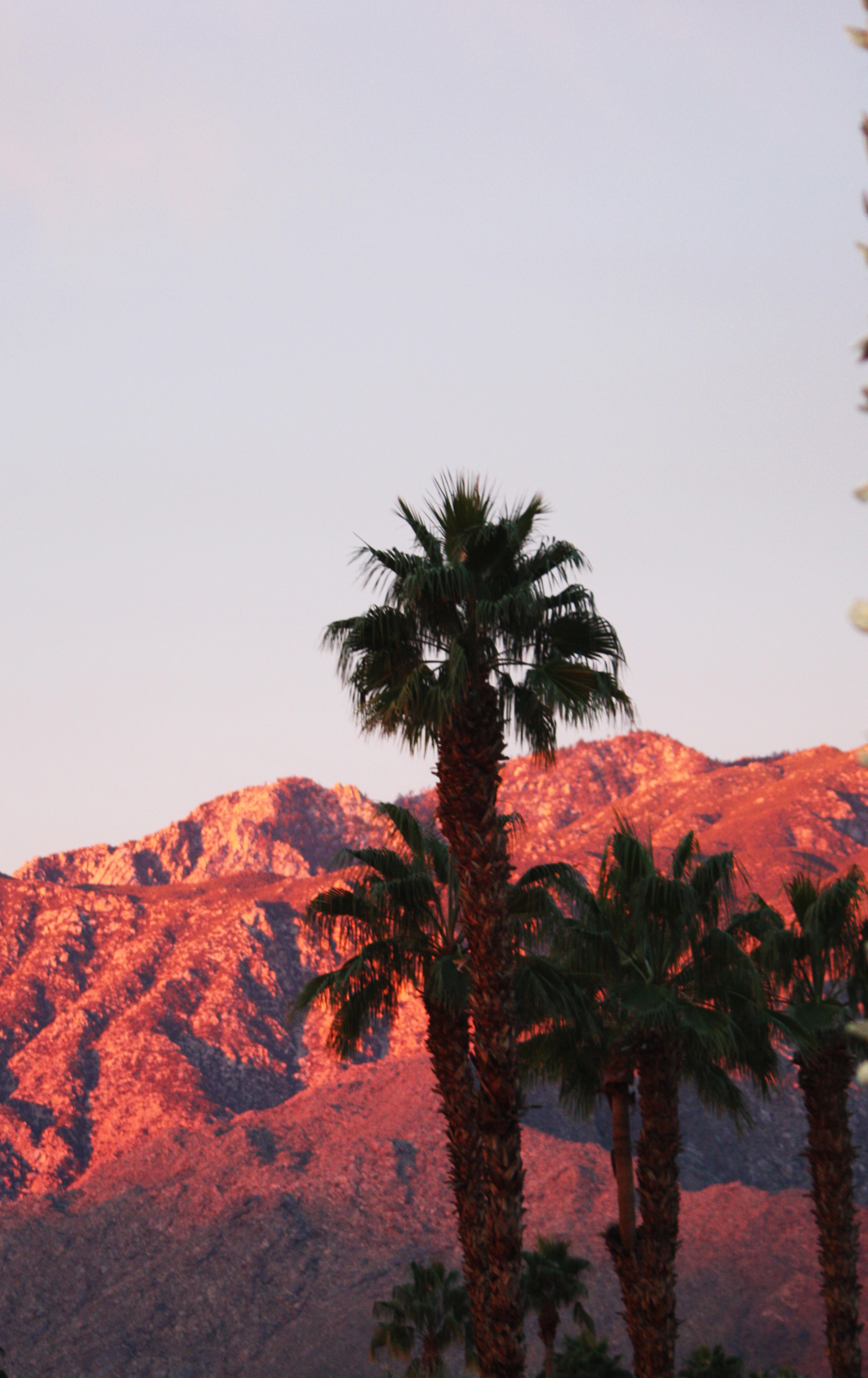 A New Day on San Jacintos - Palm Springs