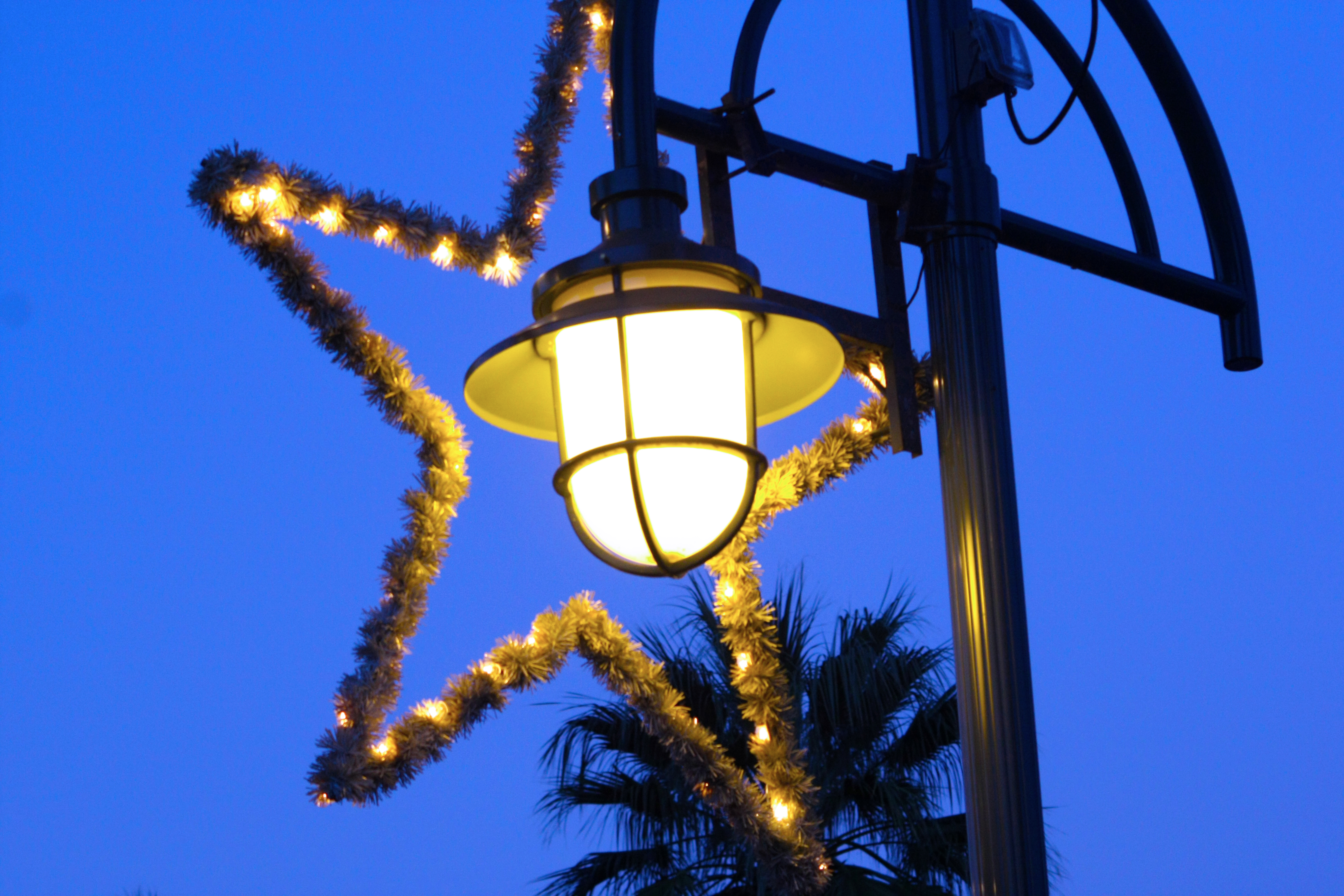 City Stars - Palm Springs