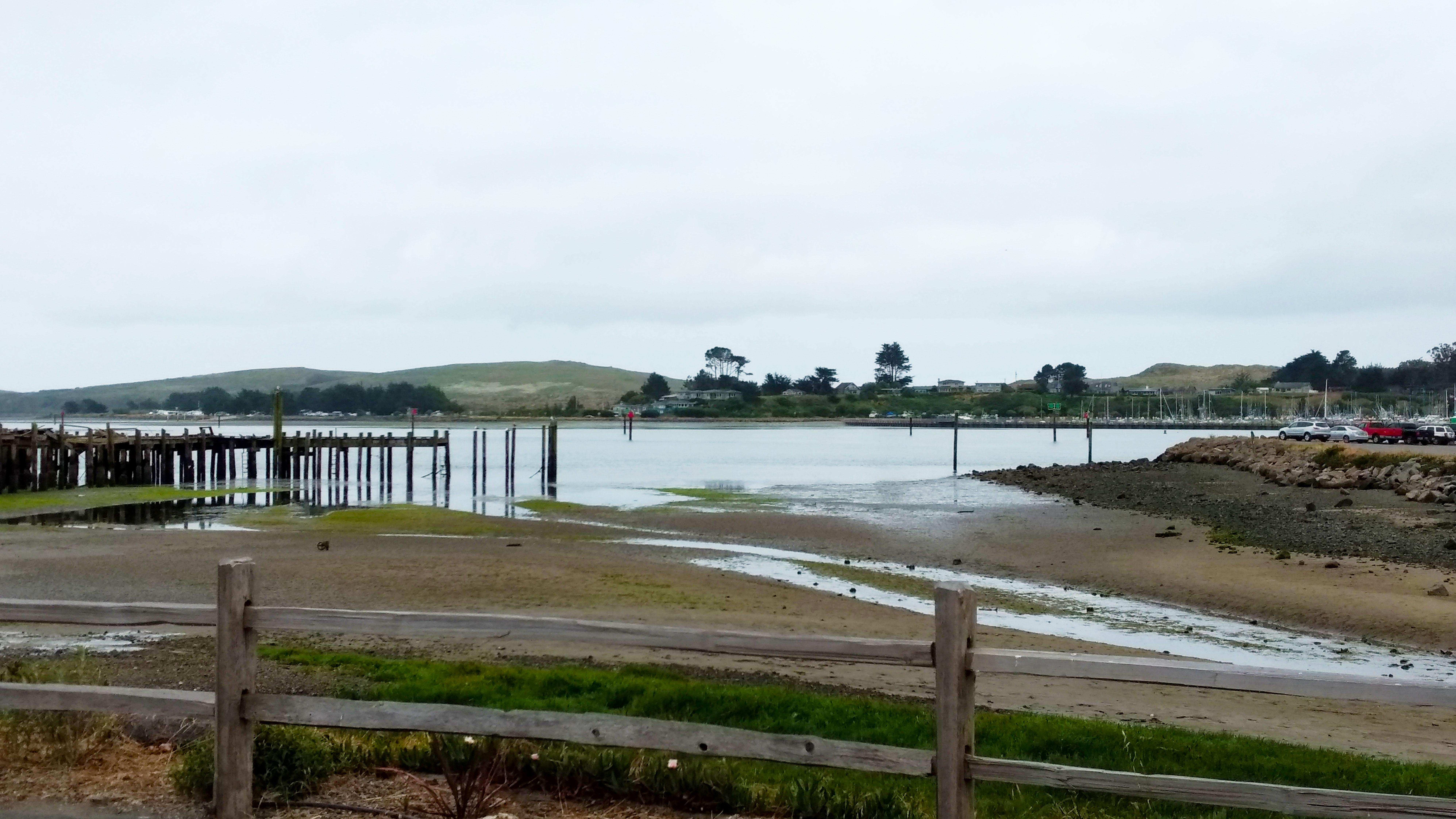 Bodega Bay - Low Tide 2