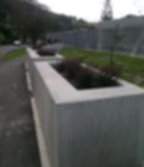 planter boxes.JPG