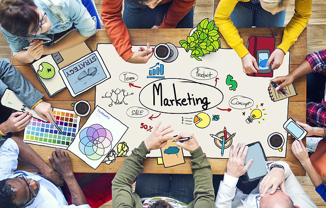 Diverse People Working and Marketing Con