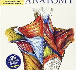 Anatomy Book