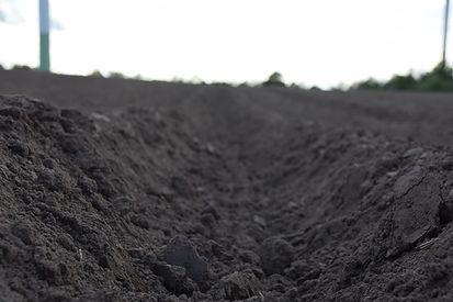 Landwirtschaft, Erde, Dämme