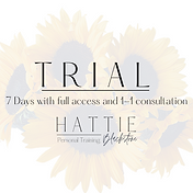Trial Wix Sign Up image.png