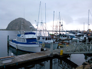 8-11 May 2015 California - Morro Bay, Pacific Coast Highway, Carmel & Monterey