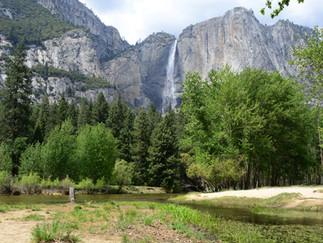 12-13 May 2015 California - Yosemite