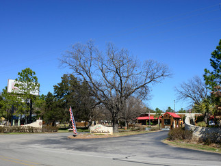 6-23 February 2015  Texas - Burleson with Gout