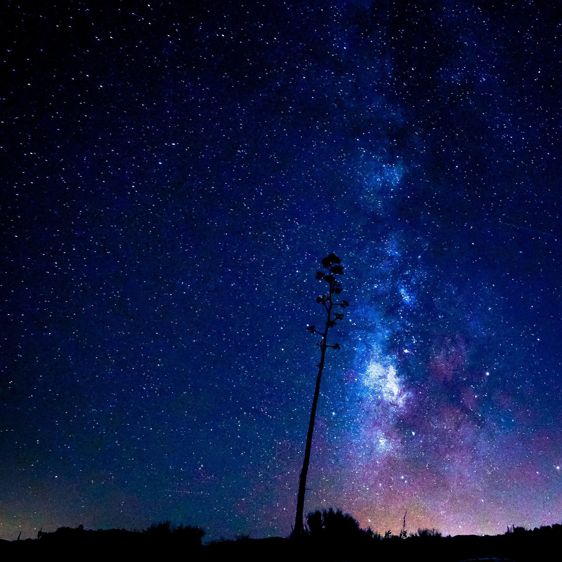 Milkyway Century