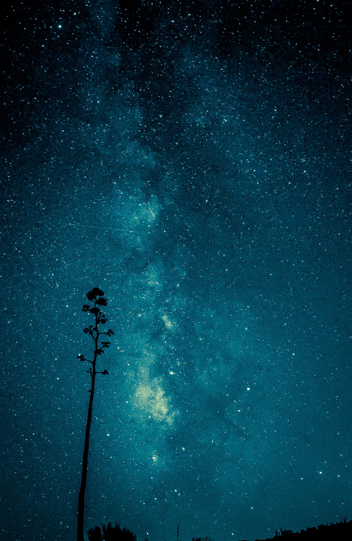 Century Galaxy