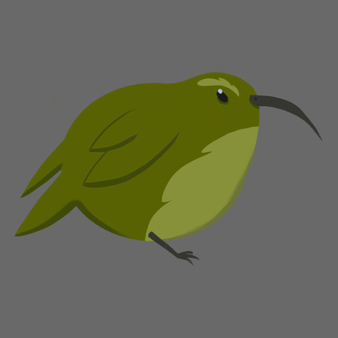 Bird character design illustrated by me.