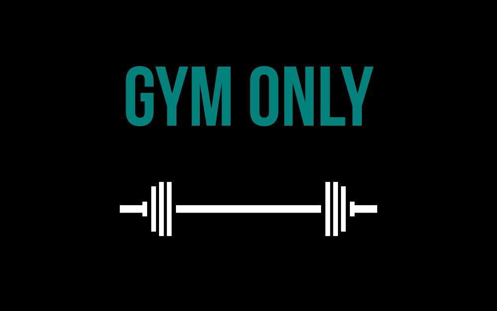 Gym / Weights Area Only