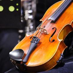 FB Bowral Concert (1).jpg