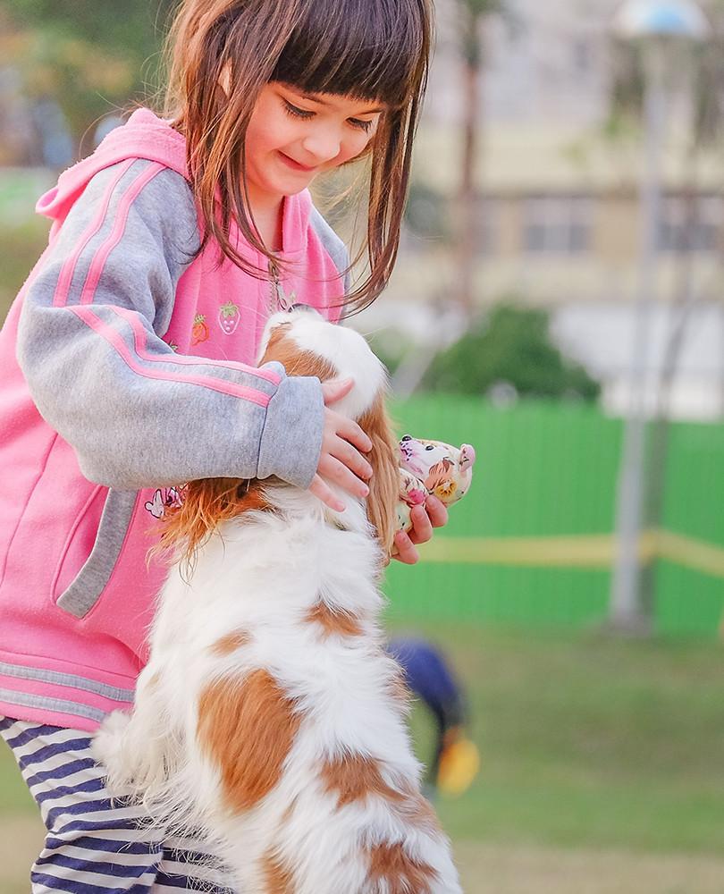 animal-child-contact-332974 copy.JPG