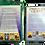 Thumbnail: The Quest Tarot - Joseph Martin