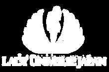 lady-universe-logo-01w.png