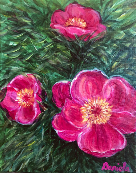 Fuchsia Darlings