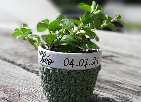 Pot Crochet plante personnalisé