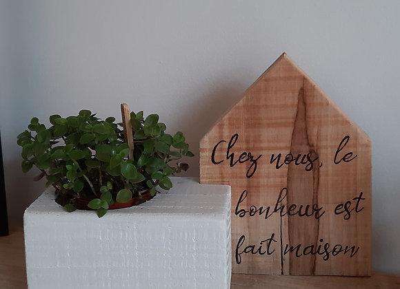 Cube plante avec Maison Phrase Naturelle avec plante